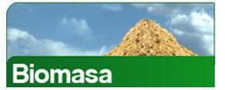 energia_biomasa.jpg